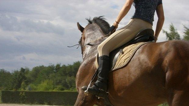 32-годишен треньор по конна езда от София е арестуван за