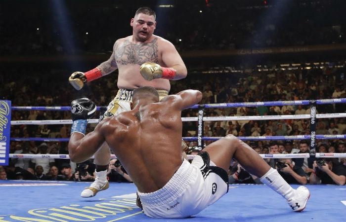 Световният шампион в тежка категория на IBF, IBO, WBA и