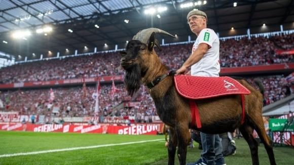 Кьолн има още двама футболисти, които са били заразени с