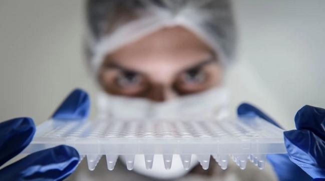 240 са новите случаи на коронавирус у нас при направени