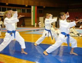 България спечели първия си медал от СП по карате