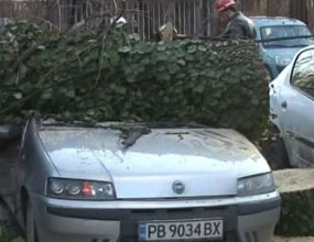 """Топола потроши девет коли на """"Армията"""" - вижте страховитите снимки от инцидента"""