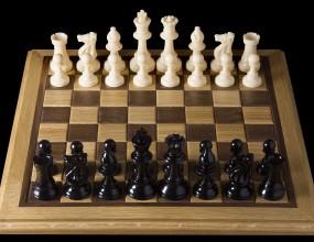 """В събота и неделя ще се проведе турнир по шахмат за деца """"Златна пешка"""""""