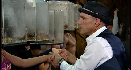 Секс и насекоми в първата нощ на Вини Джоунс в Къртицата