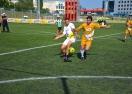 Варна е домакин на последния регионален финал на турнира на Ариана