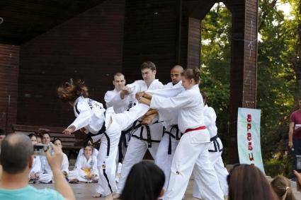 Таекуондото гони две квоти за Рио 2016