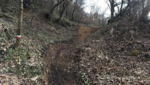 Ново трасе за планинско колоездене очаква любителите на спорта в Петрич