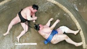 Аоияма приключи майския турнир по сумо със загуба