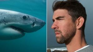 Майкъл Фелпс загуби битката с бяла акула (видео)