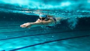 Федерацията по плувни спортове прие нов устав