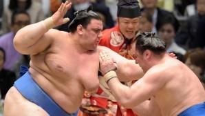 Аоияма с втори пореден успех на Новогодишния турнир по сумо