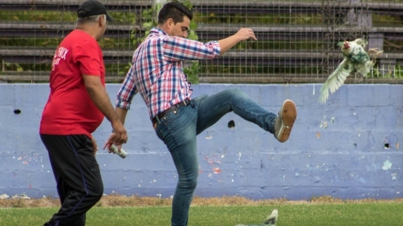 Уругвайски клуб отнесе наказание заради нахлуване на кокошки