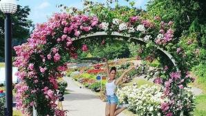 Българските рози в гимнастиката