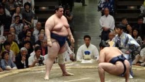 Аоияма записа четвърти последователен успех в Токио, Хакухо спечели рекордна 41-а титла