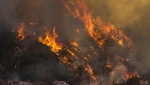 Местят понеделничния мач заради пожарите в Калифорния