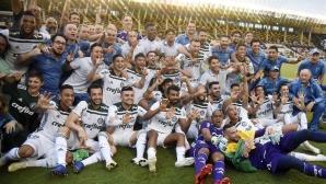 Сколари изведе Палмейрас до титлата в Бразилия (видео)