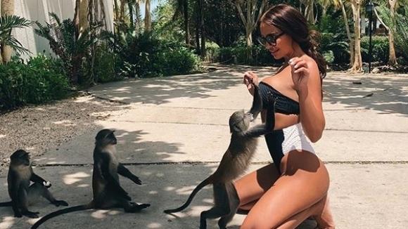 Кой иска да е на мястото на маймунката?
