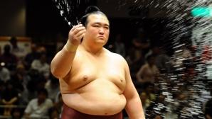 Великият шампион Кисеносато прекрати състезателната си кариера