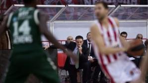 Рик Питино: Евролигата е колежански баскетбол за 30-годишни