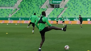 Лудогорец тренира без кадрови проблеми преди мача с Ференцварош (видео)