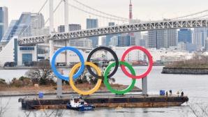 Започна поставянето на огромен монумент на петте олимпийски кръга в Токио