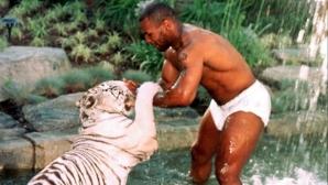 Майк Тайсън разказа как един от тигрите му разкъсал ръката на жена