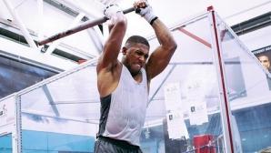 Антъни Джошуа удря здраво преди сблъсъка си срещу Кубрат Пулев (видео)