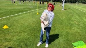 Кучето на президента на ФК Цюрих прекъсна мач в Швейцария