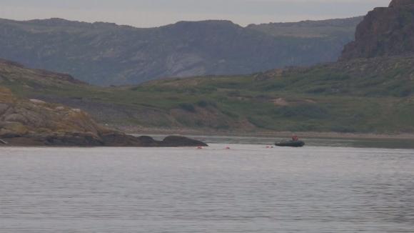 Ентусиасти се гмурнаха в Арктическия океан